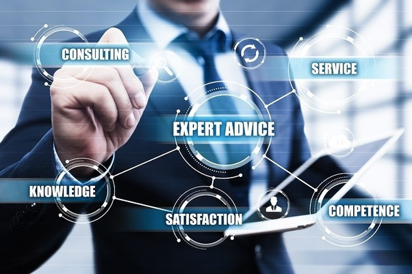 Expert Search System (Consultant)